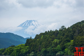 关于神奈川
