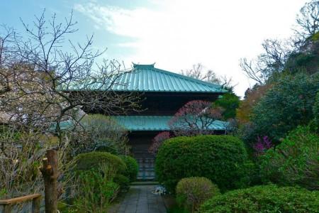 從東京出發,感受武士街道鎌倉的歷史文化的日歸之旅
