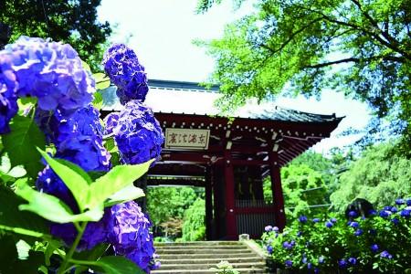 Thérapie thermale moderne et le temple Saijoji