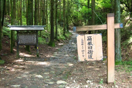 Walk the old Hakone highway and feel like a traveler in the Edo period