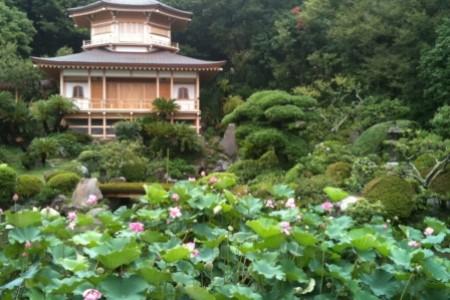 Visite du temple Kaname Kannon Bodhisattva (Temple Tendai Kaname Komyoji)