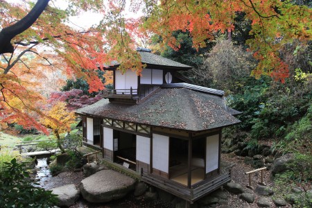 Enjoy autumn leaves at Sankeien Garden, discover traditional Japanese architecture