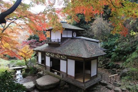 산케이엔 공원에서 가을의 낙엽을 즐기고, 일본의 전통 건축물을 발견하기