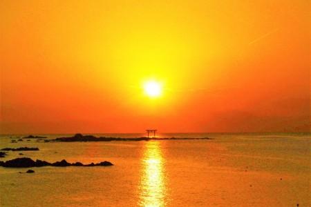 海上行程:欣赏时令花卉与海上日落的游船旅行