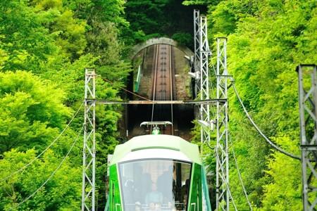 從纜車上一邊眺望這一大片的綠色美景,一邊享受空中散步的樂趣吧