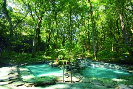 A healthy lunch to revitalize, then rejuvenate your body soaking in a forest hotspring.