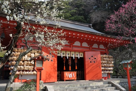 Enjoy the colors of the season amongst the shrines and temples of Japan's ancient capital, Kamakura
