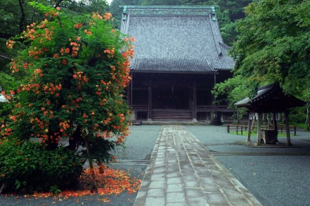 Visit Omachi and Zaimokuza, a quiet and relaxing town away from the noise of city