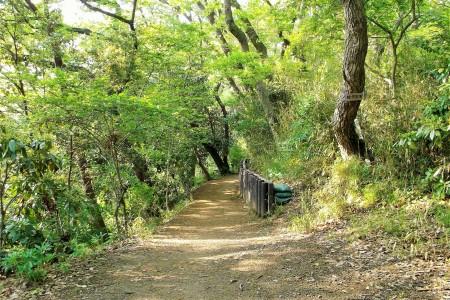 Kamakura to Kanazawa: Ten'en and Rokkoku-toge Hiking Trail