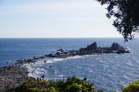 Walk along the Manazuru Peninsula and immerse yourself in the roaring seas and peaceful forest