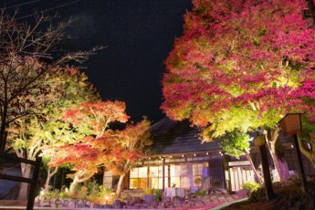 Experience the good old days of early Showa at Ryokusui-an