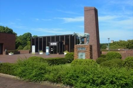 桜の根岸森林公園・馬の博物館・キリンビール横浜工場とカップヌードルミュージアム
