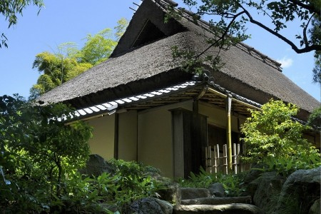 Taste the spirit of authentic Japan with zazen, traditional cuisine, and Japanese gardens
