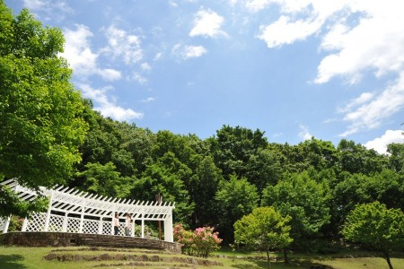 Visit a temple of romance and marriageand Nanasawa Forest Park where you can enjoyseasonal nature