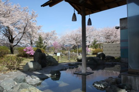 Try countryside living in Hadano and enjoy a hot spring day trip