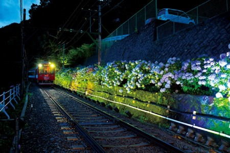 Viewing early summer Hakone through thewindow of Hakone Tozan Train 'Hydrangeatrain'.