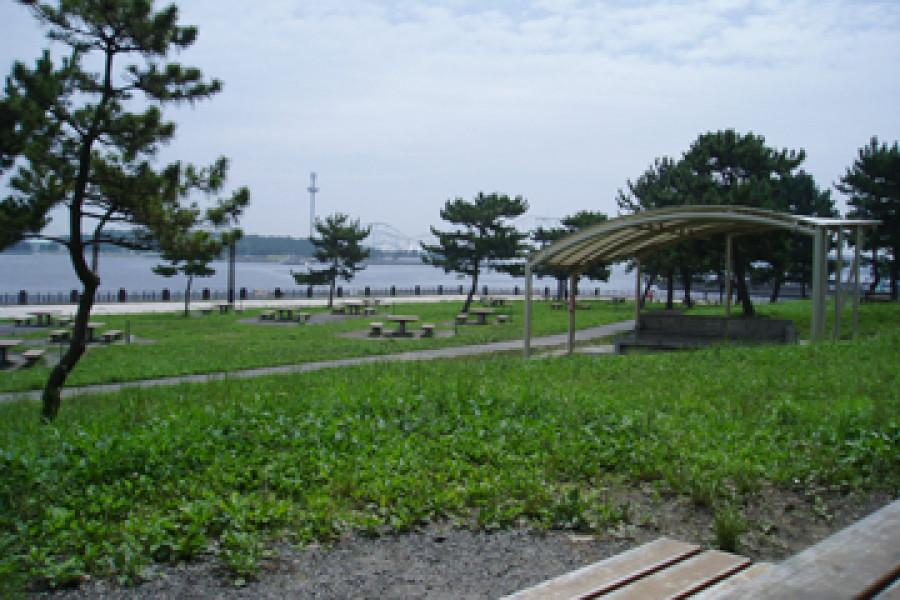 花田和海洋公园漫步之旅