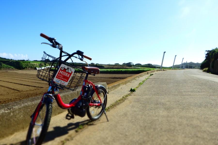 参观猿岛,沿着三浦海岸骑车欣赏自然风光