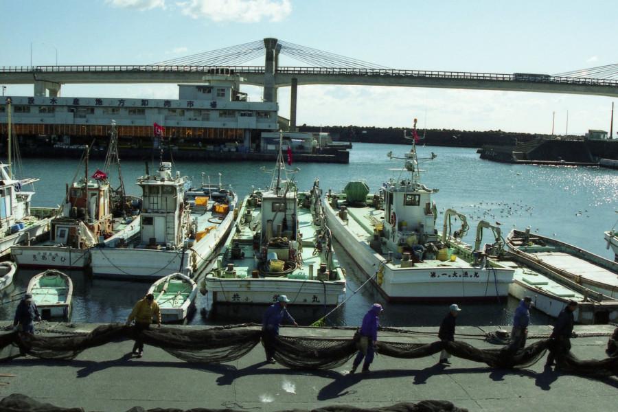 하코네의 온센 및 하야카와의 생선 경매