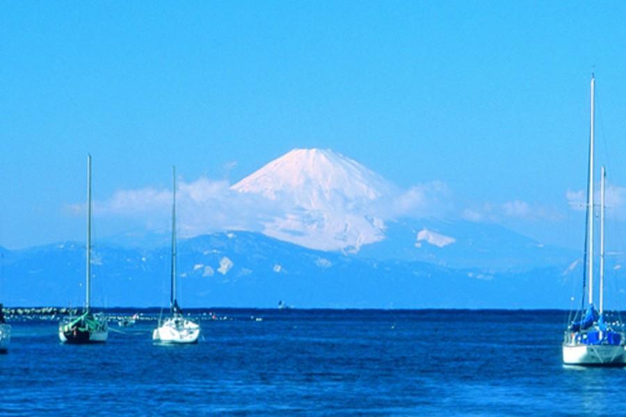 미우라의 자연과 랜드마크를 탐방하면서 바닷바람을 즐겨보세요