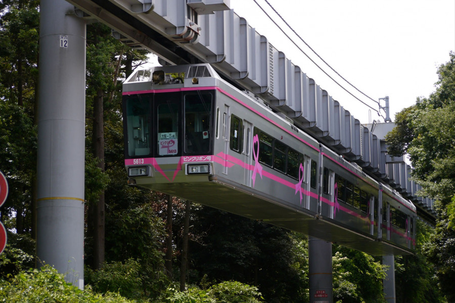 Shonan Monorail and Undiscovered Kamakura Walking Plan