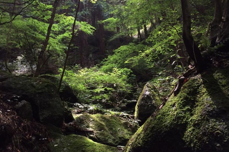 사가미 호를 따라세키로산 등반
