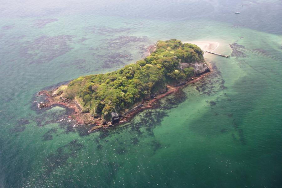 Excursion sur l'île inhabitée de Sarushima