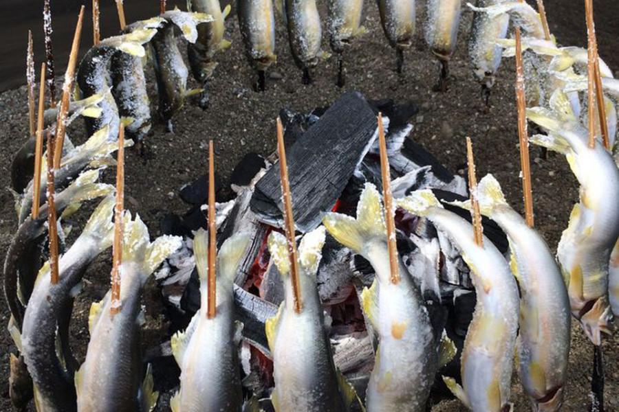 厚木鯰魚節上多汁的甜魚