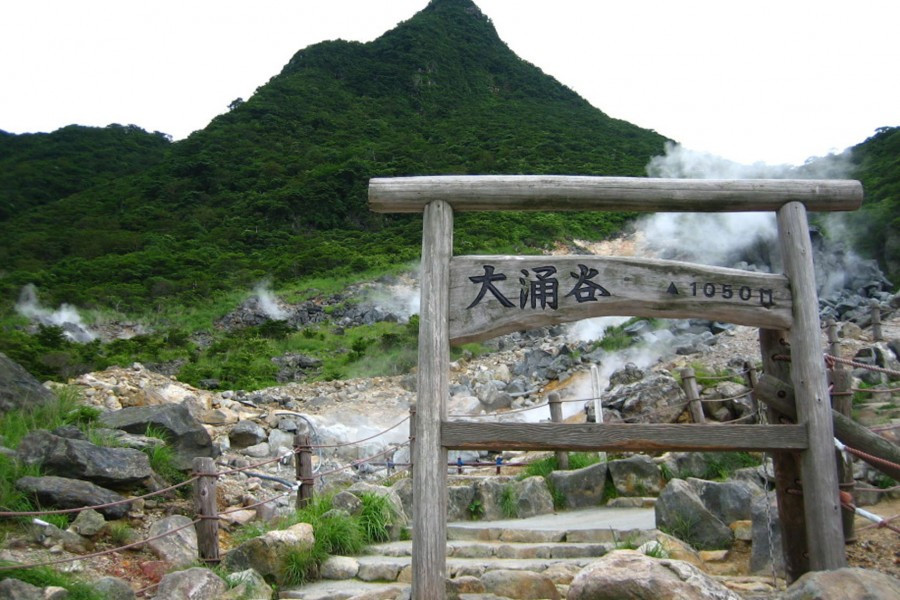 Admire Billowing Volcanic Steam and Lakeside Views in Hakone