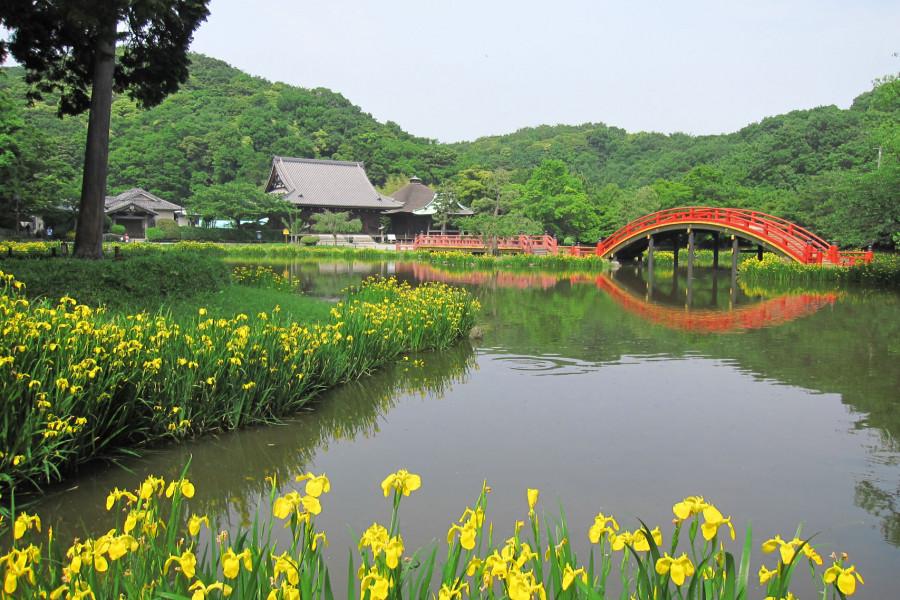 坐禅体験と絶景日本式庭園堪能