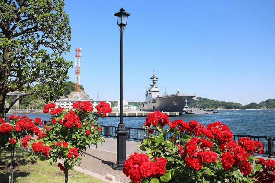 พักผ่อนกับครอบครัวในโยโกสุกะ: ดอกไม้และความสนุกริมน้ำ