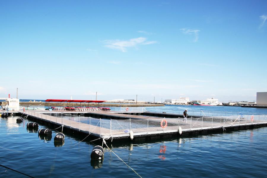 Les fruits de mer à Miura le long de la baie de Sagami