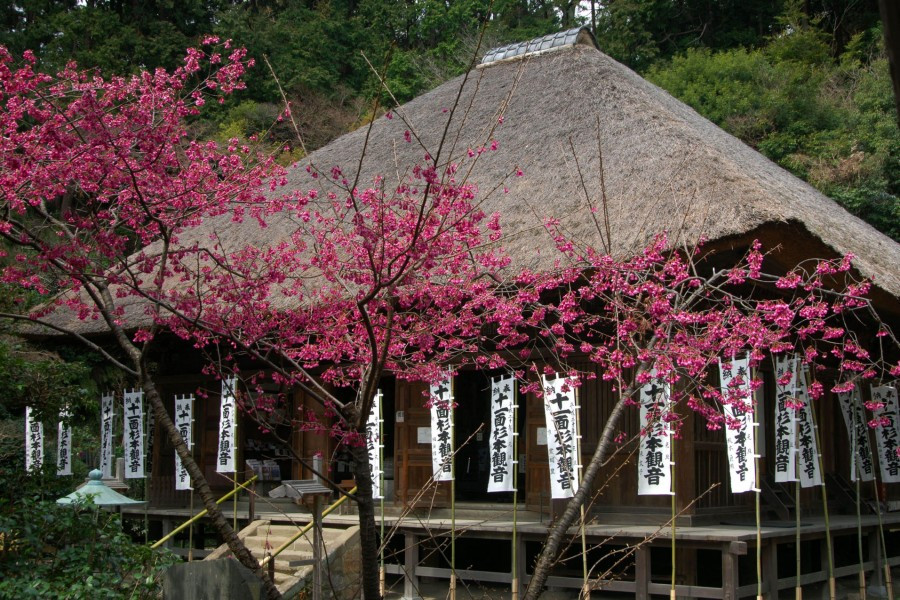 Kanazawa-Tempelspaziergang und Meditationserlebnis