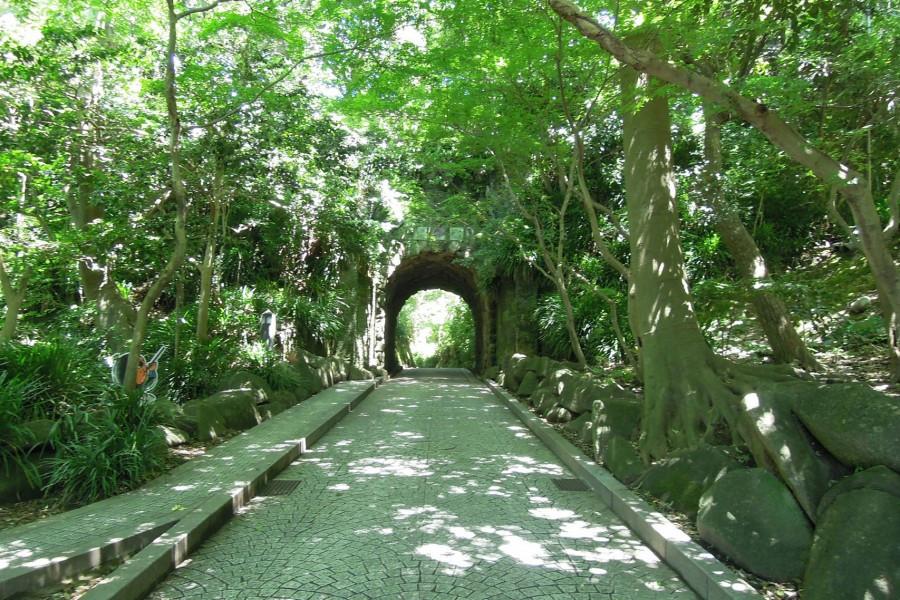 追隨古代鎌倉文學大師的腳步