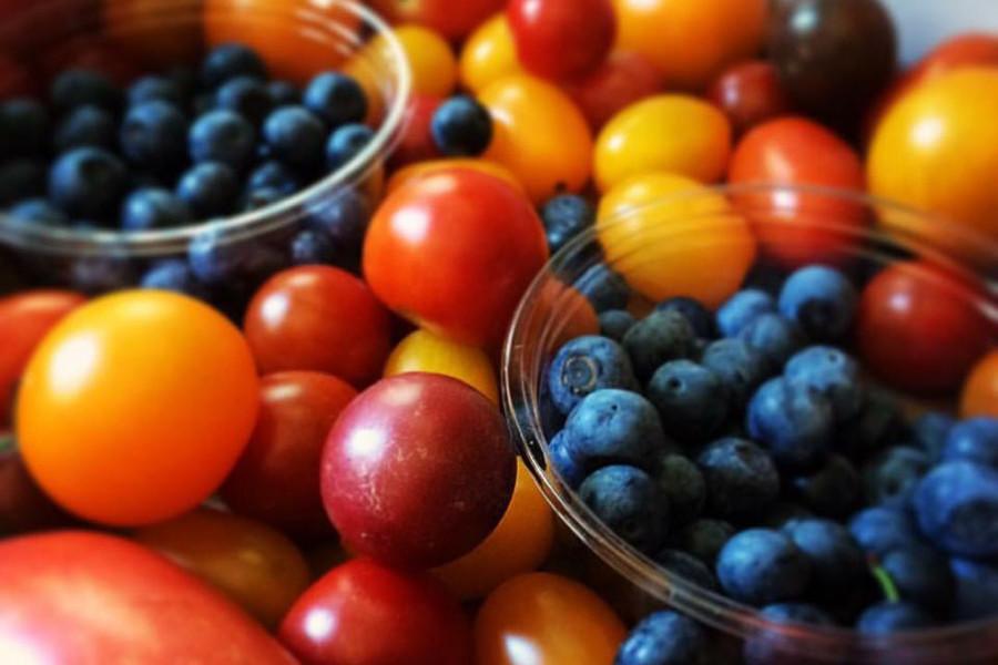 三浦半島とれたて果物・野菜満喫ツアー