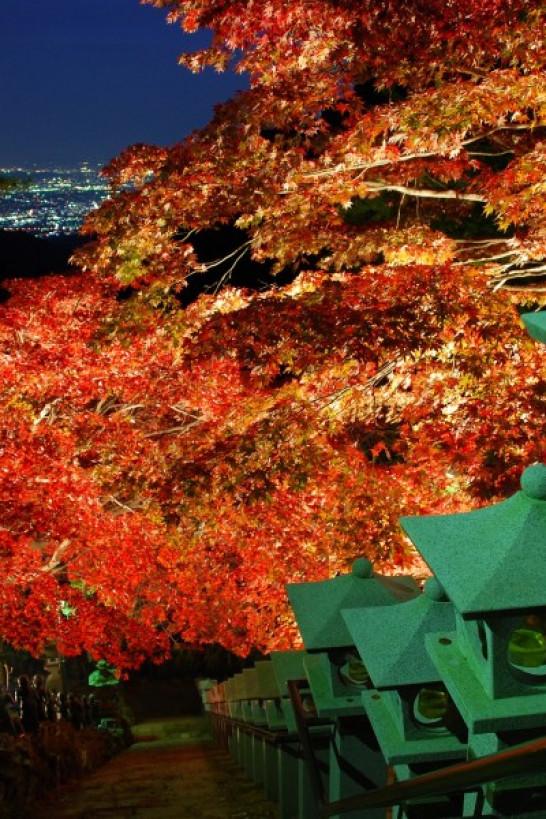 神奈川之秋