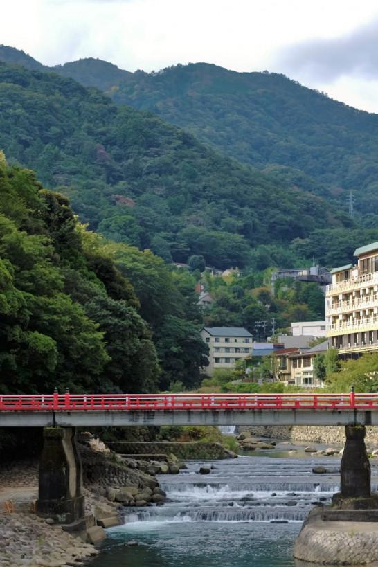箱根的大自然之旅