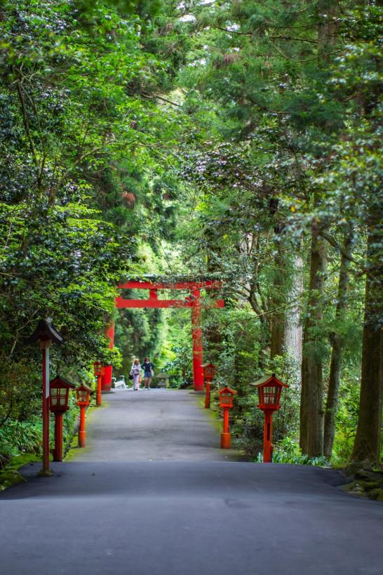 Vielseitiges Hakone