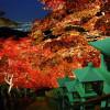 Mùa thu ở Kanagawa