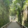 神奈川の自然を満喫しよう
