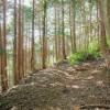 Tuyến đường trên núi Iyori