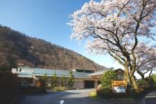 Tsutsuji No Cyaya, Hotel Hatsuhana