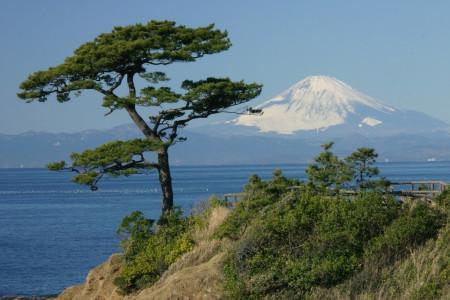 橫須賀的海上旅行:探索海邊和美國文化