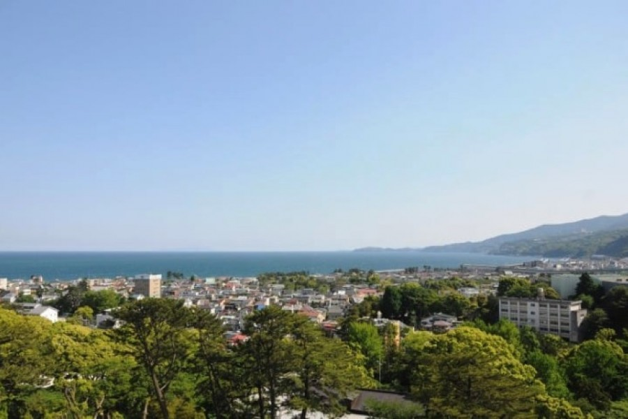 Picture courtesy of Odawara Tourism Association