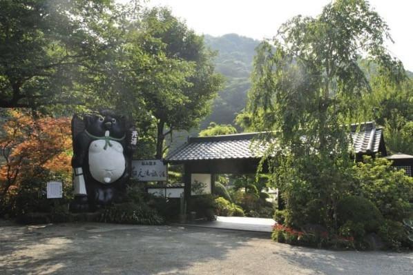 Picture courtesy: Iiyama Onsen Motoyu Ryokan