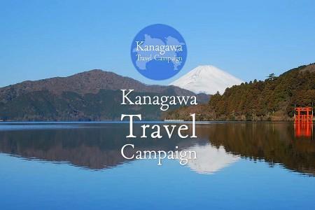 Offre spéciale pour votre voyage à Kanagawa !