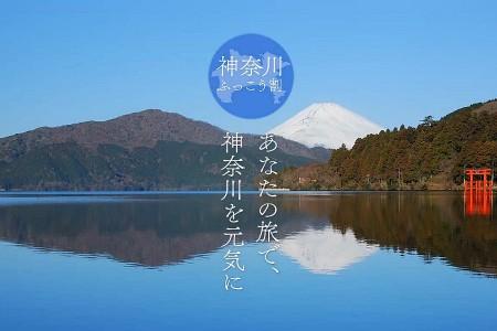神奈川県ふっこう割を使って冬の神奈川を満喫しよう!