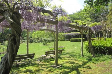 Công viên Obajoshi
