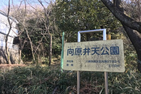 向原弁天公園(麻生区北部地区 富士山が見えるコース)