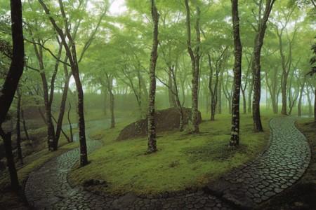 Bảo tàng Nghệ thuật Hakone